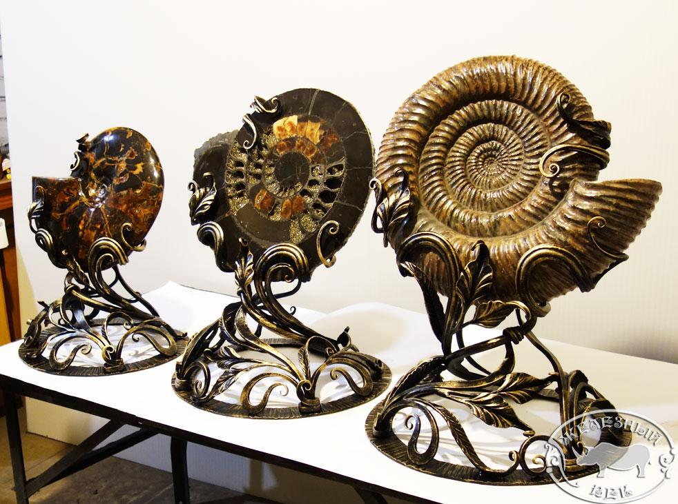 podstavka-ammonit-082